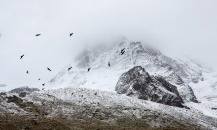Undiscovered Scotland: My Paradise